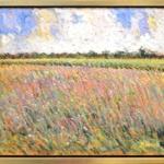 Sammoun Wild Lavender And Lupins framed