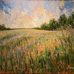Wild Lavender Field