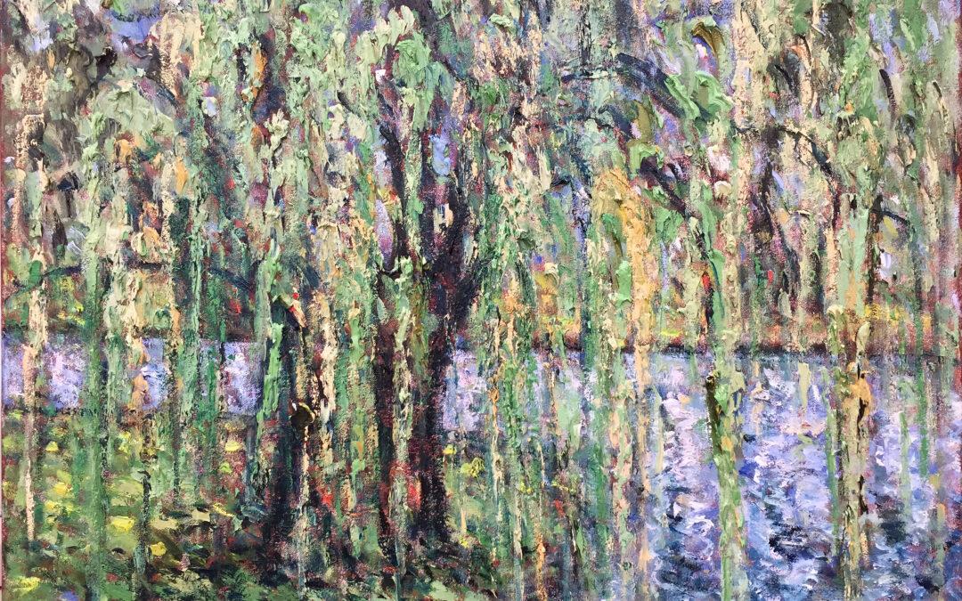 Weeping Willow, Botanical Gardens