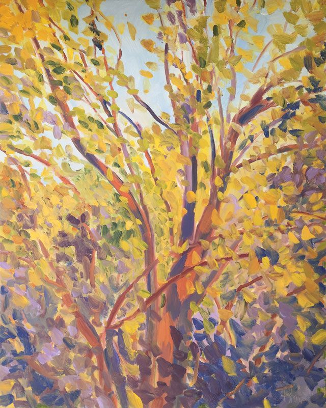 Ted Cowart - Sunlit Leaves VI, 2019; Painting; Original oil on canvas; Signed; Contemporary Art; Off The Wall Gallery Houston